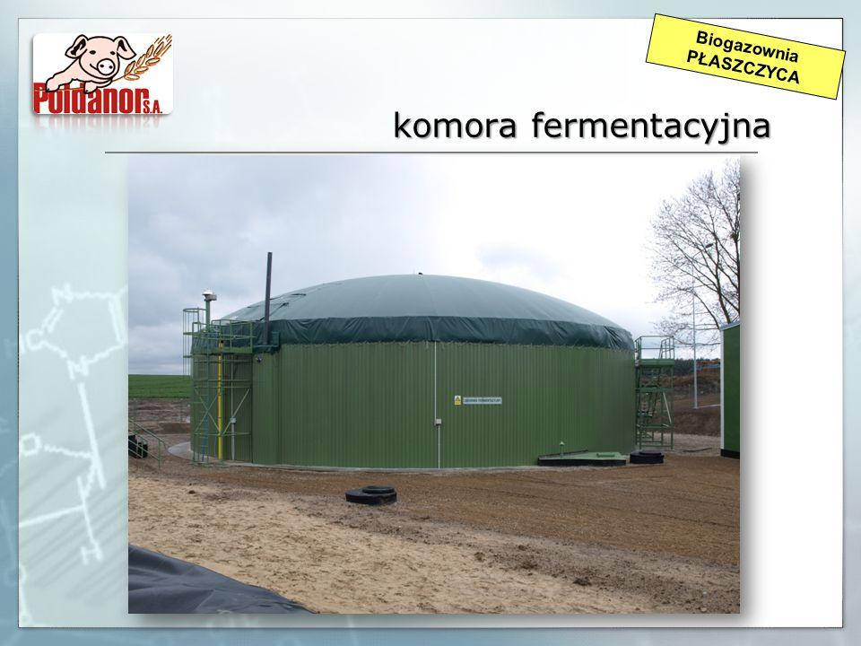 komora fermentacyjna Biogazownia PŁASZCZYCA