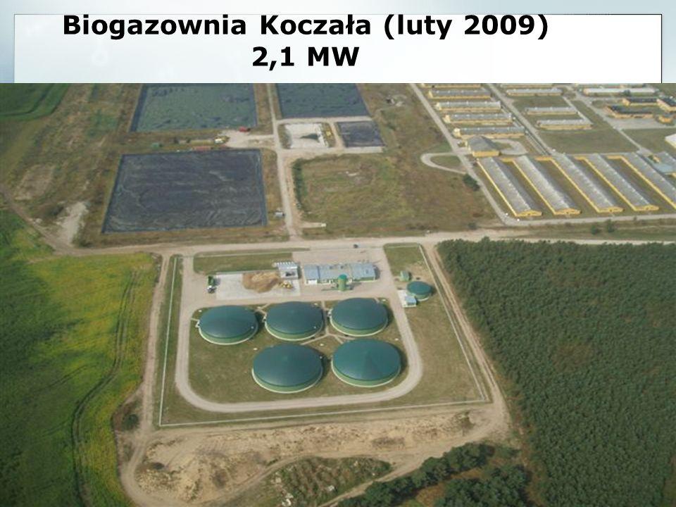 Biogazownia Koczała (luty 2009) 2,1 MW Moc generatora: 2 x 1064 kW