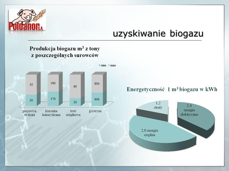 uzyskiwanie biogazu