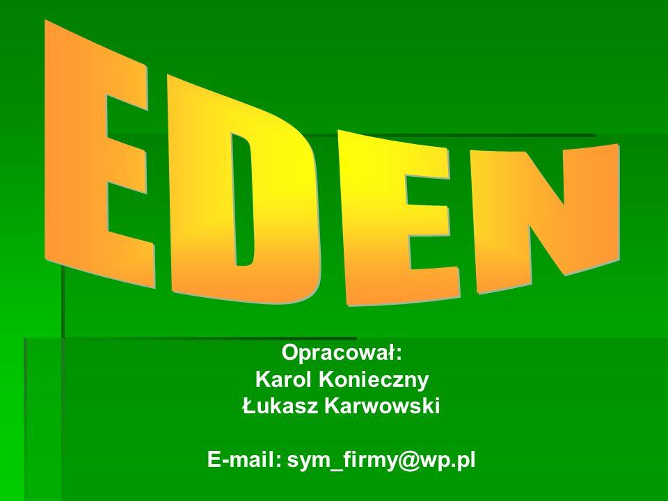 Opracował: Karol Konieczny Łukasz Karwowski E-mail: sym_firmy@wp.pl