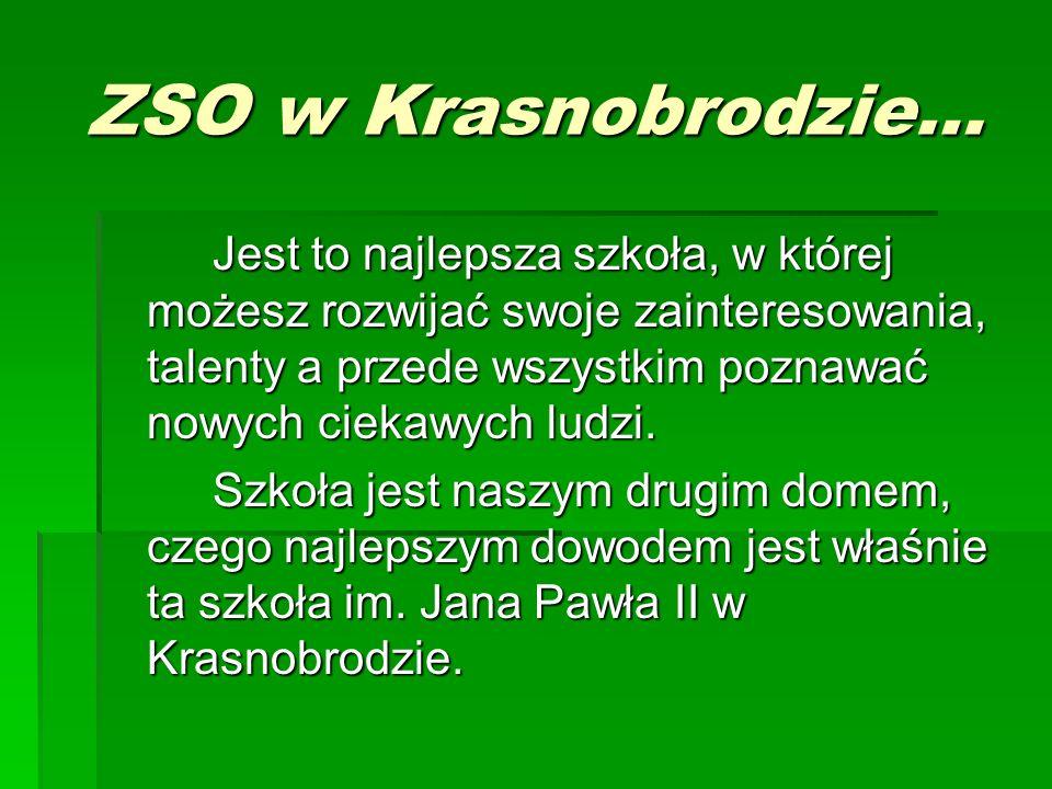 ZSO w Krasnobrodzie… Jest to najlepsza szkoła, w której możesz rozwijać swoje zainteresowania, talenty a przede wszystkim poznawać nowych ciekawych lu