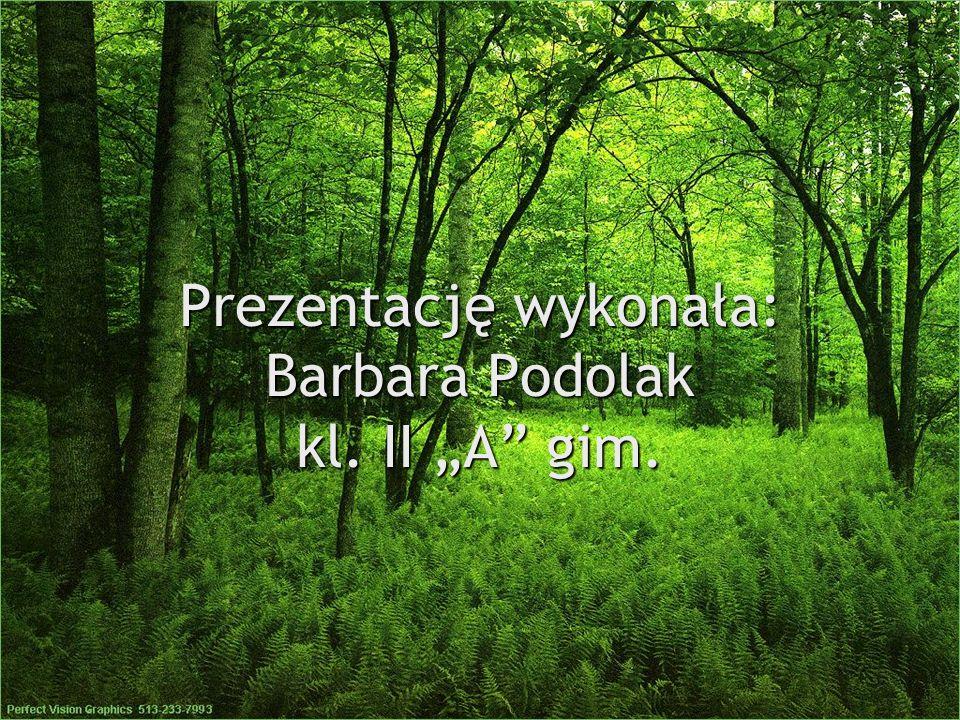 Prezentację wykonała: Barbara Podolak kl. II A gim.