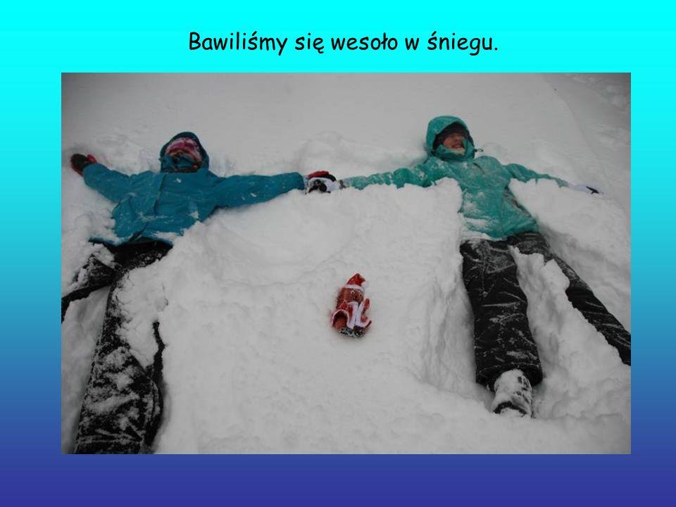 Bawiliśmy się wesoło w śniegu.