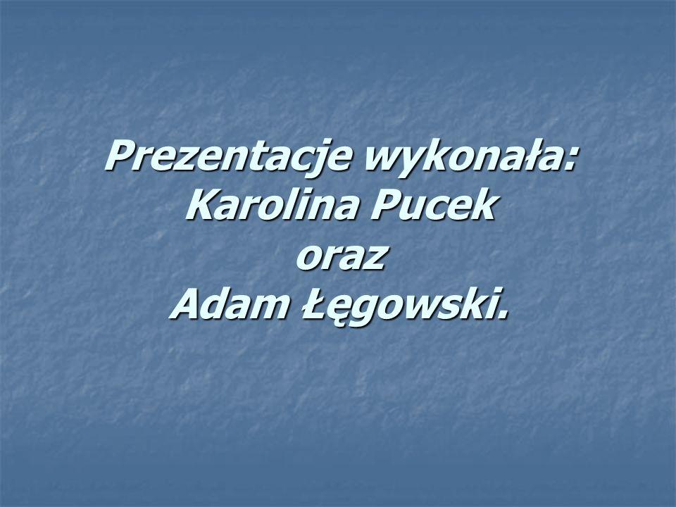 Prezentacje wykonała: Karolina Pucek oraz Adam Łęgowski.