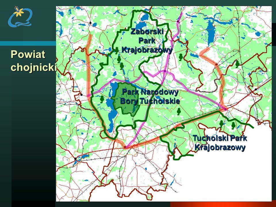 Powiat chojnicki ZaborskiParkKrajobrazowy Park Narodowy Bory Tucholskie Tucholski Park Krajobrazowy