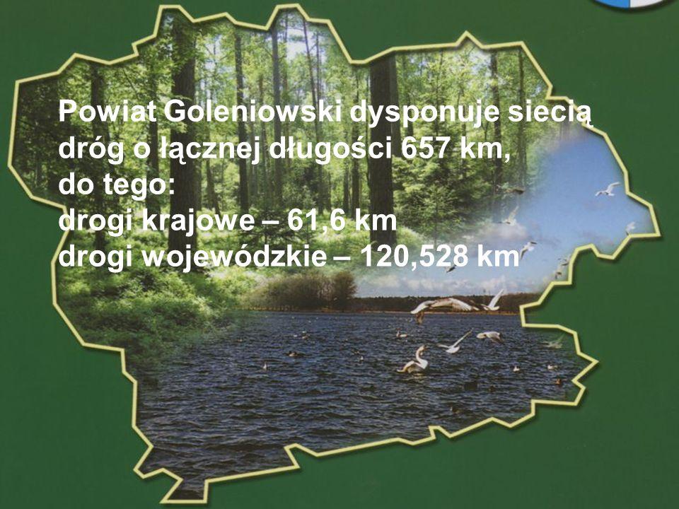 Powiat Goleniowski dysponuje siecią dróg o łącznej długości 657 km, do tego: drogi krajowe – 61,6 km drogi wojewódzkie – 120,528 km