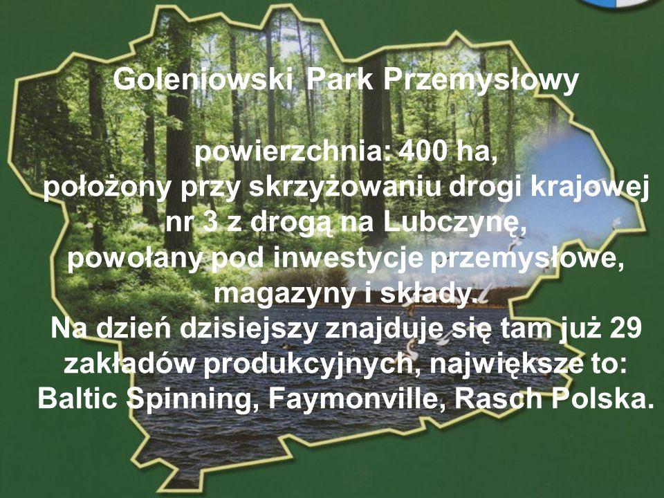 POWIAT GOLENIOWSKI Goleniowski Park Przemysłowy powierzchnia: 400 ha, położony przy skrzyżowaniu drogi krajowej nr 3 z drogą na Lubczynę, powołany pod