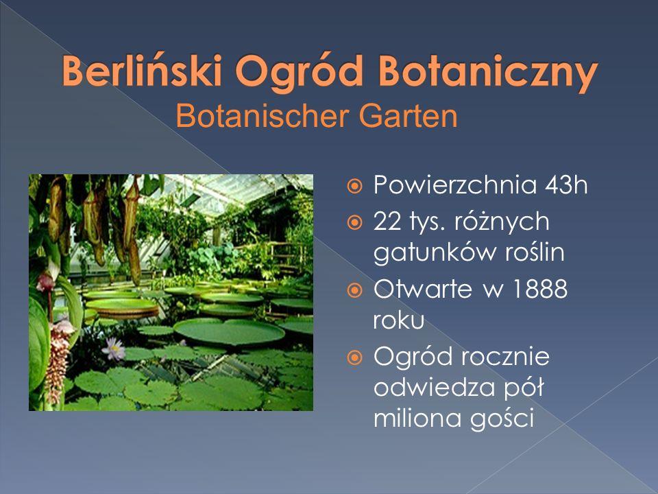 Powierzchnia 43h 22 tys. różnych gatunków roślin Otwarte w 1888 roku Ogród rocznie odwiedza pół miliona gości Botanischer Garten