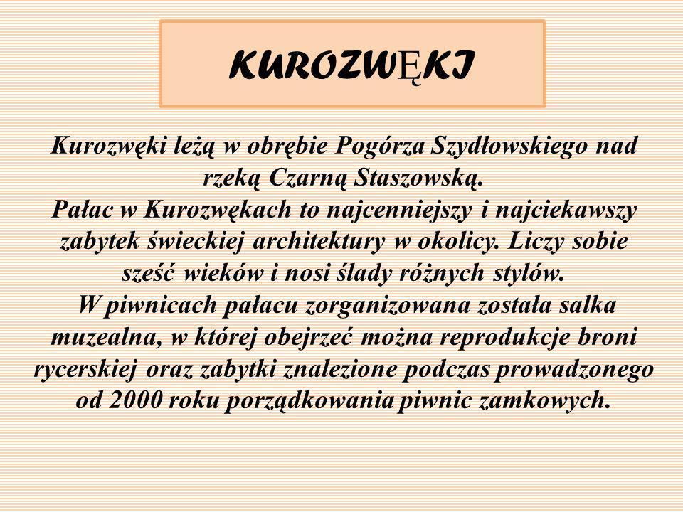 KUROZW Ę KI Kurozwęki leżą w obrębie Pogórza Szydłowskiego nad rzeką Czarną Staszowską. Pałac w Kurozwękach to najcenniejszy i najciekawszy zabytek św