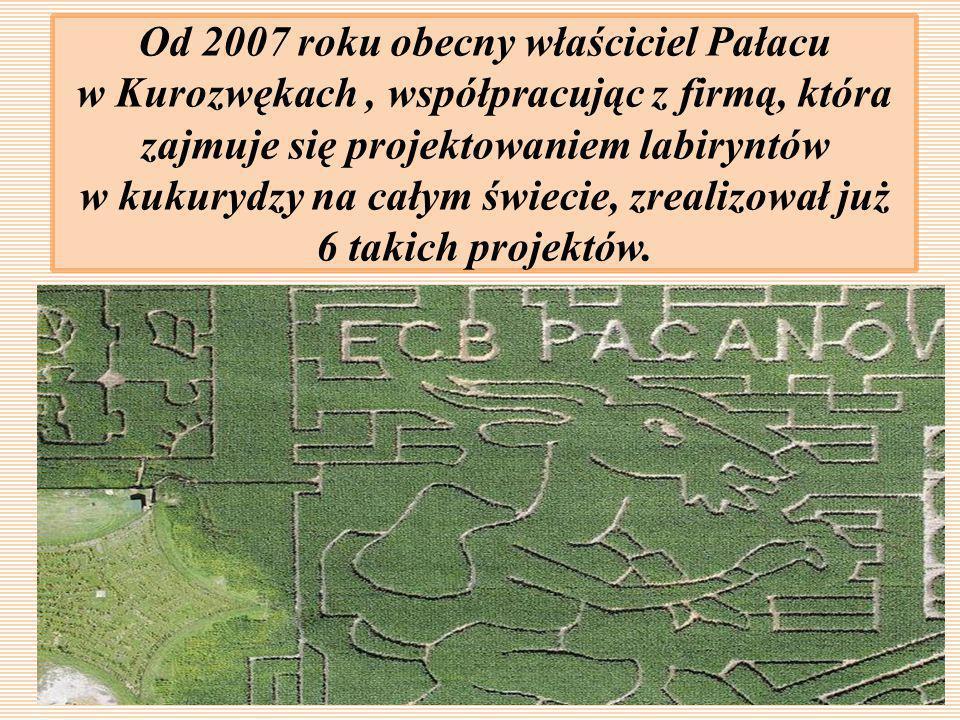 Od 2007 roku obecny właściciel Pałacu w Kurozwękach, współpracując z firmą, która zajmuje się projektowaniem labiryntów w kukurydzy na całym świecie,