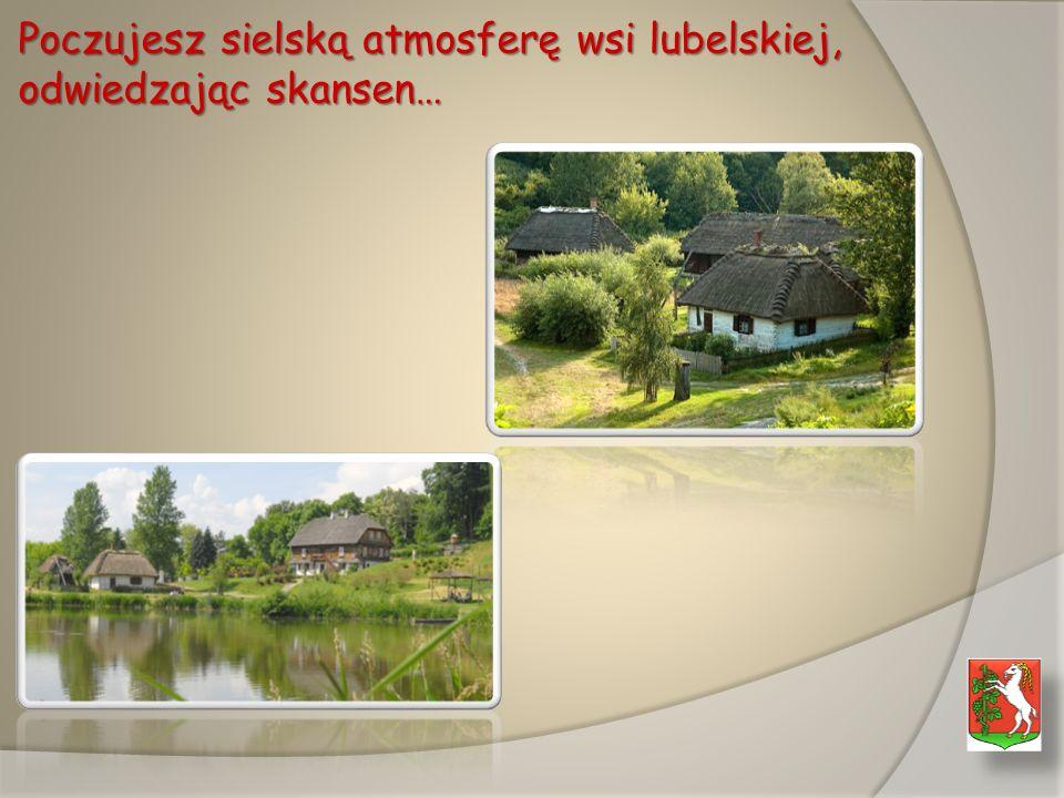 Poczujesz sielską atmosferę wsi lubelskiej, odwiedzając skansen…