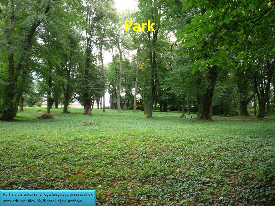 Park Park na cmentarzu.Droga biegnąca przez środek prowadzi od ulicy Myśliborskiej do grobów.