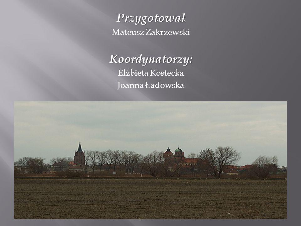 Przygotował Mateusz ZakrzewskiKoordynatorzy: Elżbieta Kostecka Joanna Ładowska