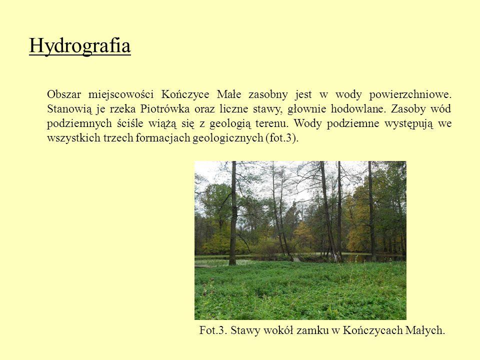 Hydrografia Obszar miejscowości Kończyce Małe zasobny jest w wody powierzchniowe. Stanowią je rzeka Piotrówka oraz liczne stawy, głownie hodowlane. Za