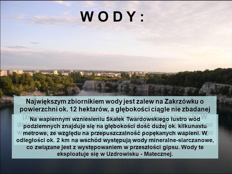 W O D Y : Największym zbiornikiem wody jest zalew na Zakrzówku o powierzchni ok. 12 hektarów, a głębokości ciągle nie zbadanej (zmieniająca się w zwią