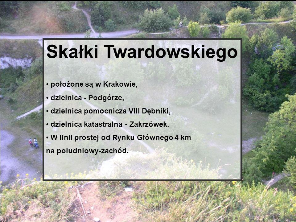 Skałki Twardowskiego położone są w Krakowie, dzielnica - Podgórze, dzielnica pomocnicza VIII Dębniki, dzielnica katastralna - Zakrzówek. W linii prost