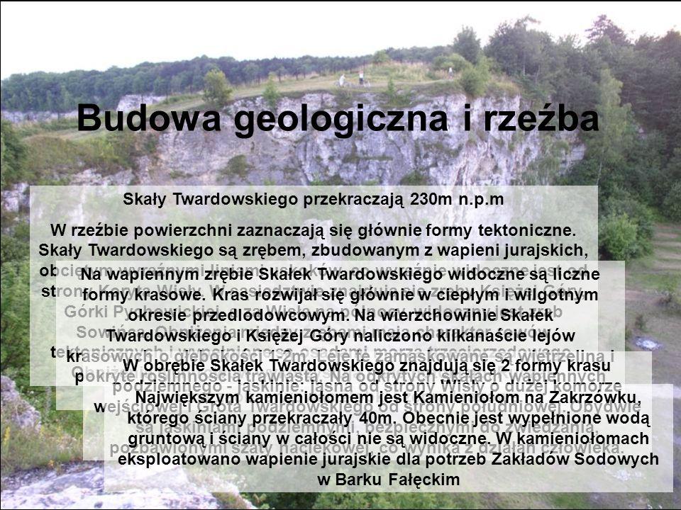 Budowa geologiczna i rzeźba Skały Twardowskiego przekraczają 230m n.p.m W rzeźbie powierzchni zaznaczają się głównie formy tektoniczne. Skały Twardows