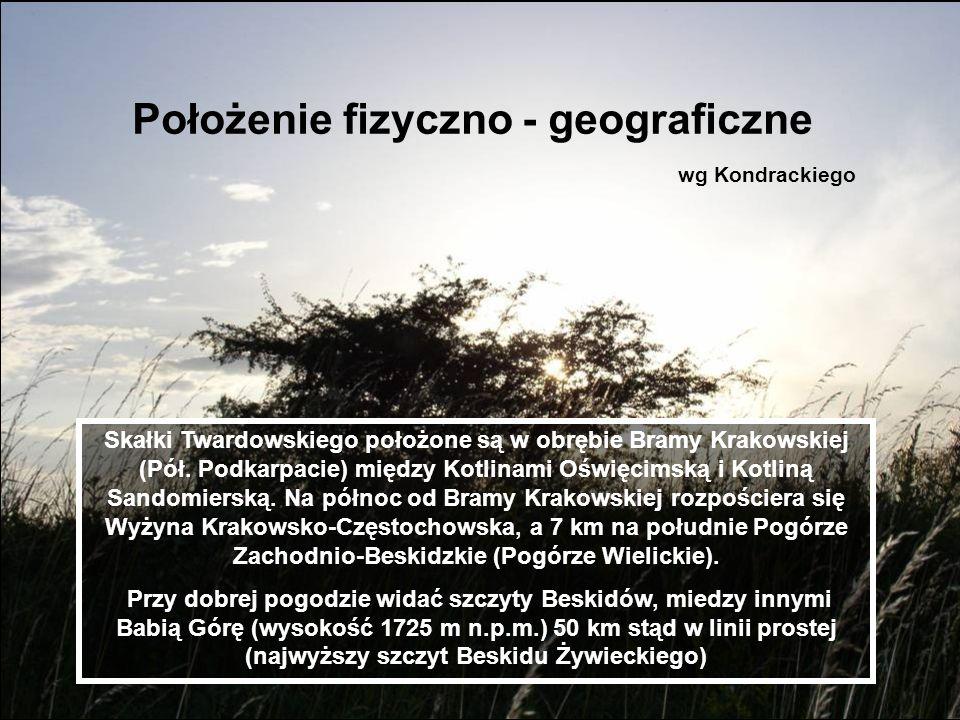 Położenie fizyczno - geograficzne wg Kondrackiego Skałki Twardowskiego położone są w obrębie Bramy Krakowskiej (Pół. Podkarpacie) między Kotlinami Ośw