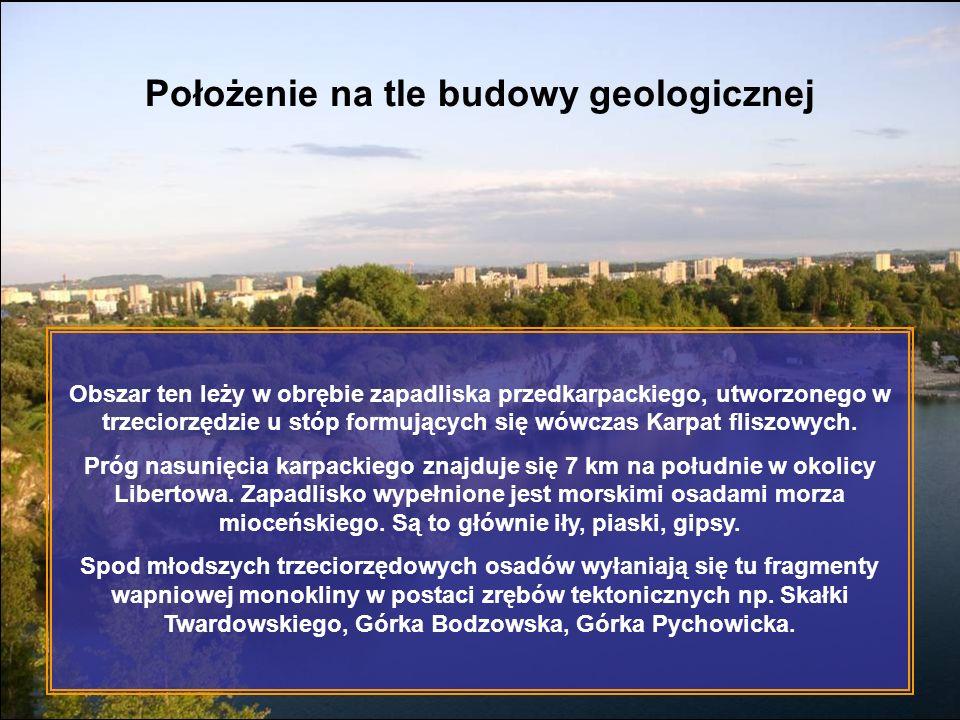 Położenie na tle budowy geologicznej Obszar ten leży w obrębie zapadliska przedkarpackiego, utworzonego w trzeciorzędzie u stóp formujących się wówcza