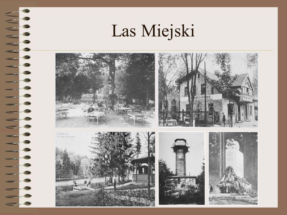 Las Miejski
