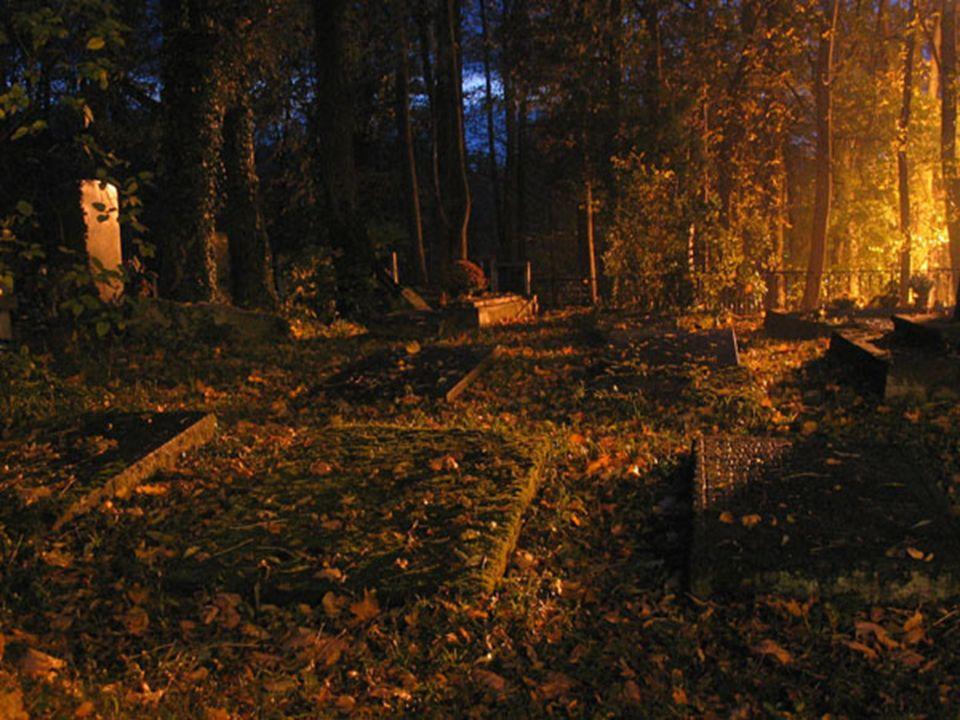 Kiedy już opuszczam bramy cmentarza..... zmarłe dusze żegnam powoli..... Nie proszę Boga o życie, ale mam nadzieję...... że za rok tu przyjść mi pozwo
