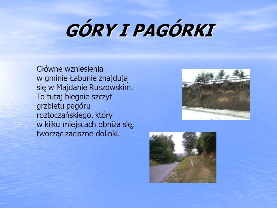 GÓRY I PAGÓRKI Główne wzniesienia w gminie Łabunie znajdują się w Majdanie Ruszowskim. To tutaj biegnie szczyt grzbietu pagóru roztoczańskiego, który