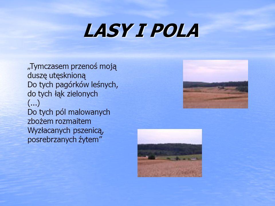 LASY I POLA LASY I POLA Tymczasem przenoś moją duszę utęsknioną Do tych pagórków leśnych, do tych łąk zielonych (...) Do tych pól malowanych zbożem ro