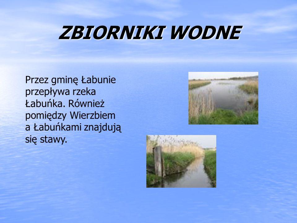 ZBIORNIKI WODNE Przez gminę Łabunie przepływa rzeka Łabuńka. Również pomiędzy Wierzbiem a Łabuńkami znajdują się stawy.