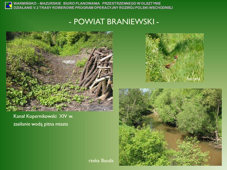 - POWIAT BRANIEWSKI - Kanał Kopernikowski XIV w. zasilanie wodą pitna miasta rzeka Bauda bażant