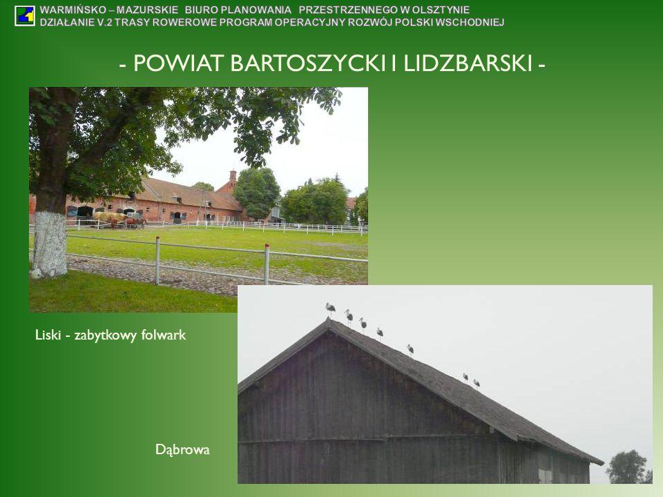 - POWIAT BARTOSZYCKI I LIDZBARSKI - Liski - zabytkowy folwark Dąbrowa