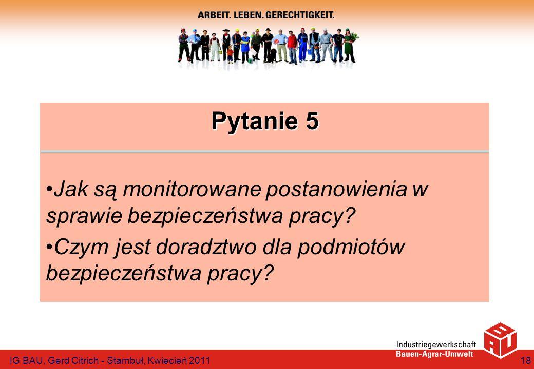 Pytanie 5 Jak są monitorowane postanowienia w sprawie bezpieczeństwa pracy? Czym jest doradztwo dla podmiotów bezpieczeństwa pracy? IG BAU, Gerd Citri
