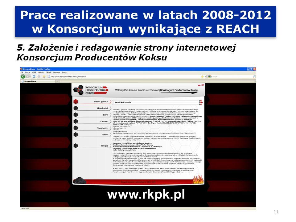 Prace realizowane w latach 2008-2012 w Konsorcjum wynikające z REACH 6.
