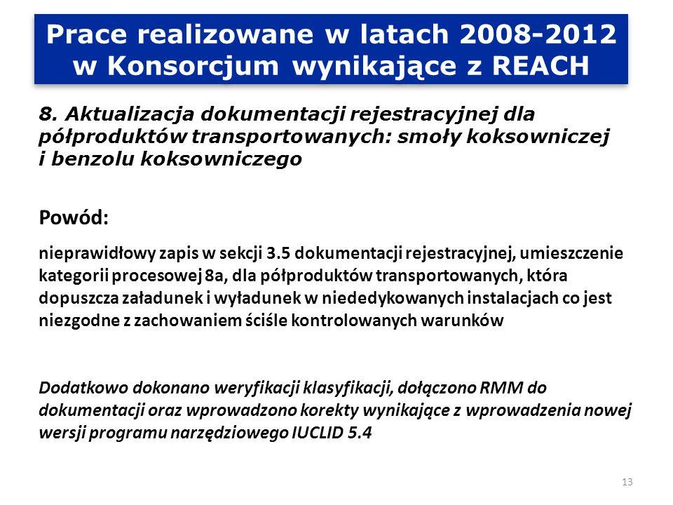 Prace realizowane w latach 2008-2012 w Konsorcjum wynikające z REACH 9.