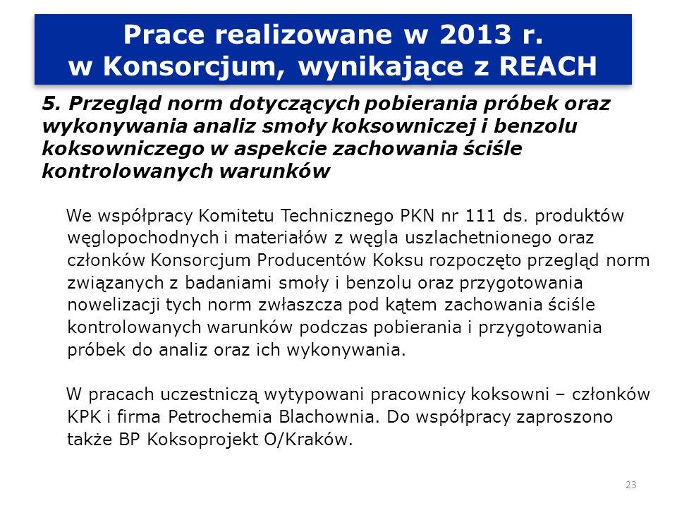 Prace realizowane w 2013 r.w Konsorcjum, wynikające z REACH Prace realizowane w 2013 r.