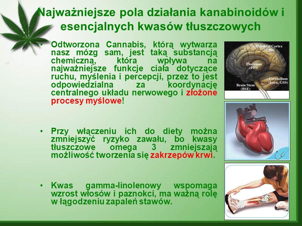 Najważniejsze pola działania kanabinoidów i esencjalnych kwasów tłuszczowych Odtworzona Cannabis, którą wytwarza nasz mózg sam, jest taką substancją c