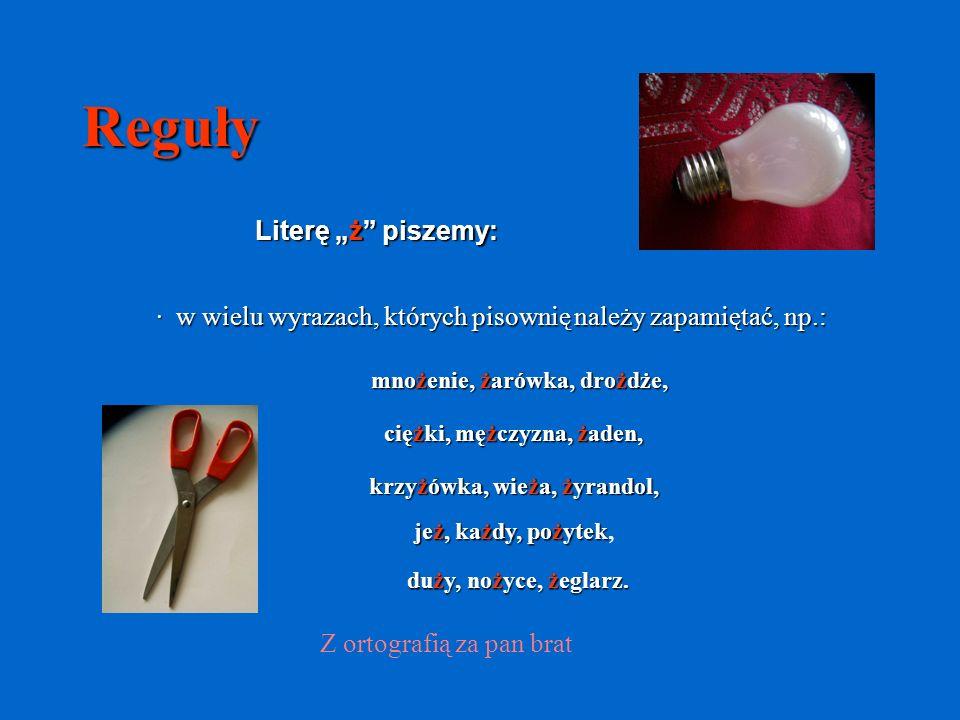 KONIEC cz.2 Z ortografią za pan brat W prezentacji wykorzystano zdjęcia autorskie.