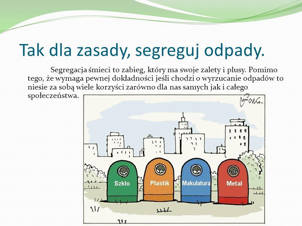 Tak dla zasady, segreguj odpady. Segregacja śmieci to zabieg, który ma swoje zalety i plusy. Pomimo tego, że wymaga pewnej dokładności jeśli chodzi o