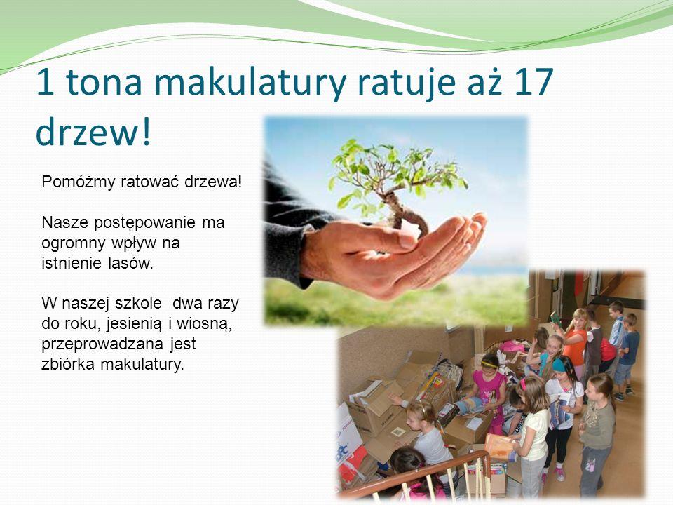 1 tona makulatury ratuje aż 17 drzew! Pomóżmy ratować drzewa! Nasze postępowanie ma ogromny wpływ na istnienie lasów. W naszej szkole dwa razy do roku