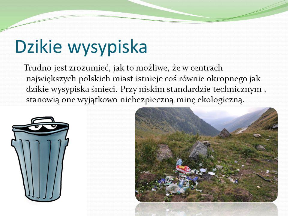 Dzikie wysypiska Trudno jest zrozumieć, jak to możliwe, że w centrach największych polskich miast istnieje coś równie okropnego jak dzikie wysypiska ś