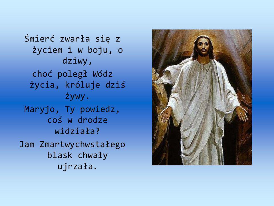 Żywego już Pana widziałam grób pusty i świadków anielskich, i odzież, i chusty.