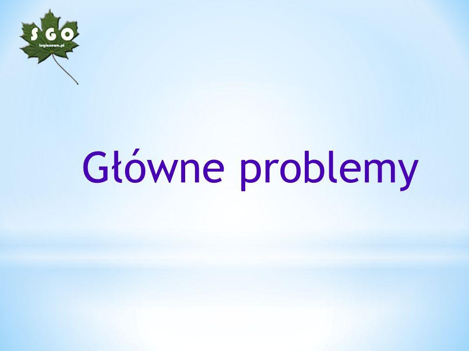 Główne problemy