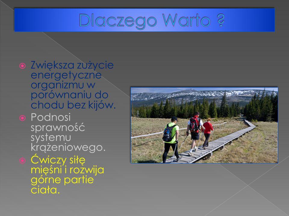 Zwiększa zużycie energetyczne organizmu w porównaniu do chodu bez kijów.