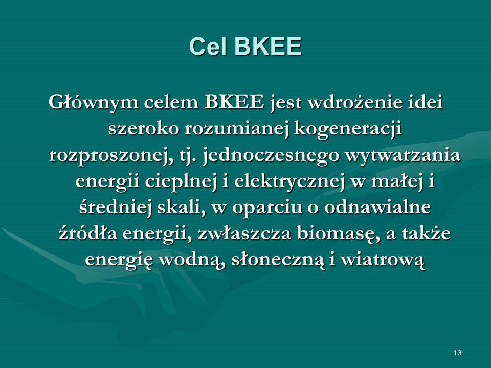 13 Cel BKEE Głównym celem BKEE jest wdrożenie idei szeroko rozumianej kogeneracji rozproszonej, tj. jednoczesnego wytwarzania energii cieplnej i elekt