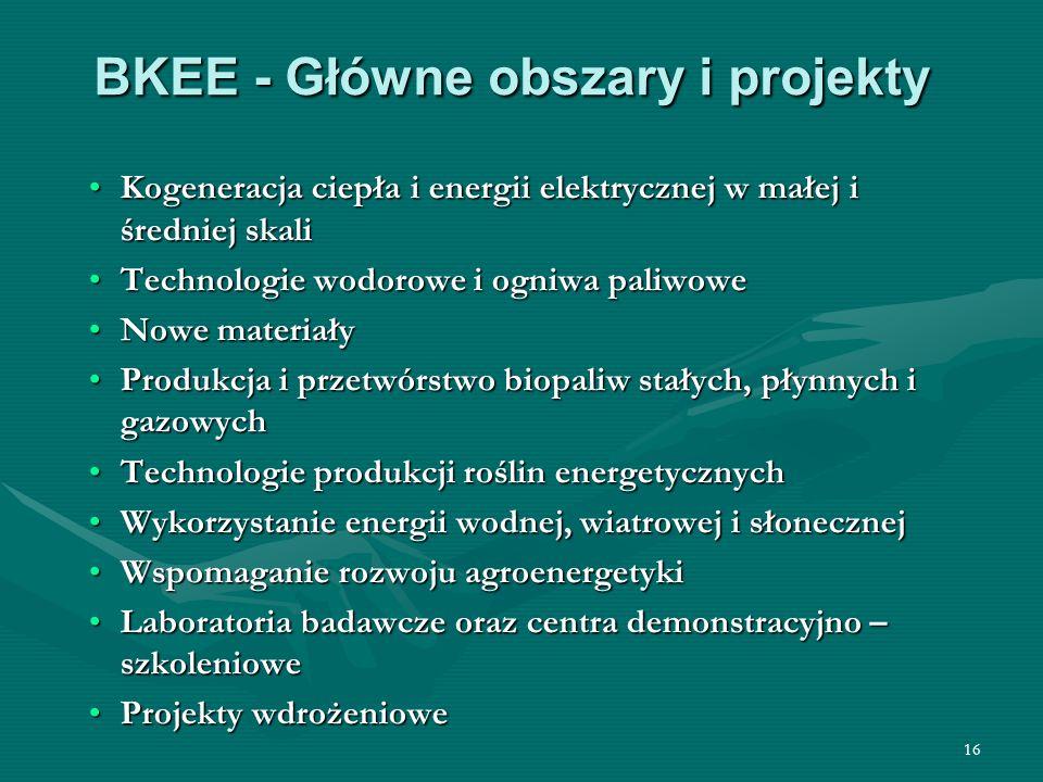 16 BKEE - Główne obszary i projekty Kogeneracja ciepła i energii elektrycznej w małej i średniej skali Technologie wodorowe i ogniwa paliwowe Nowe mat