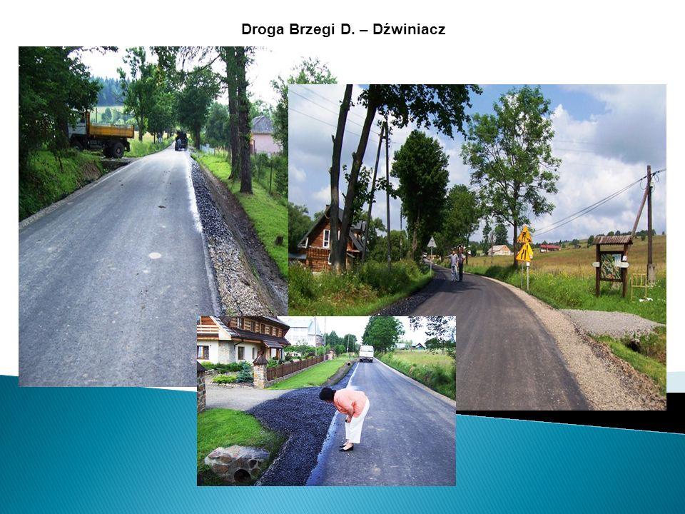 Droga Brzegi D. – Dźwiniacz