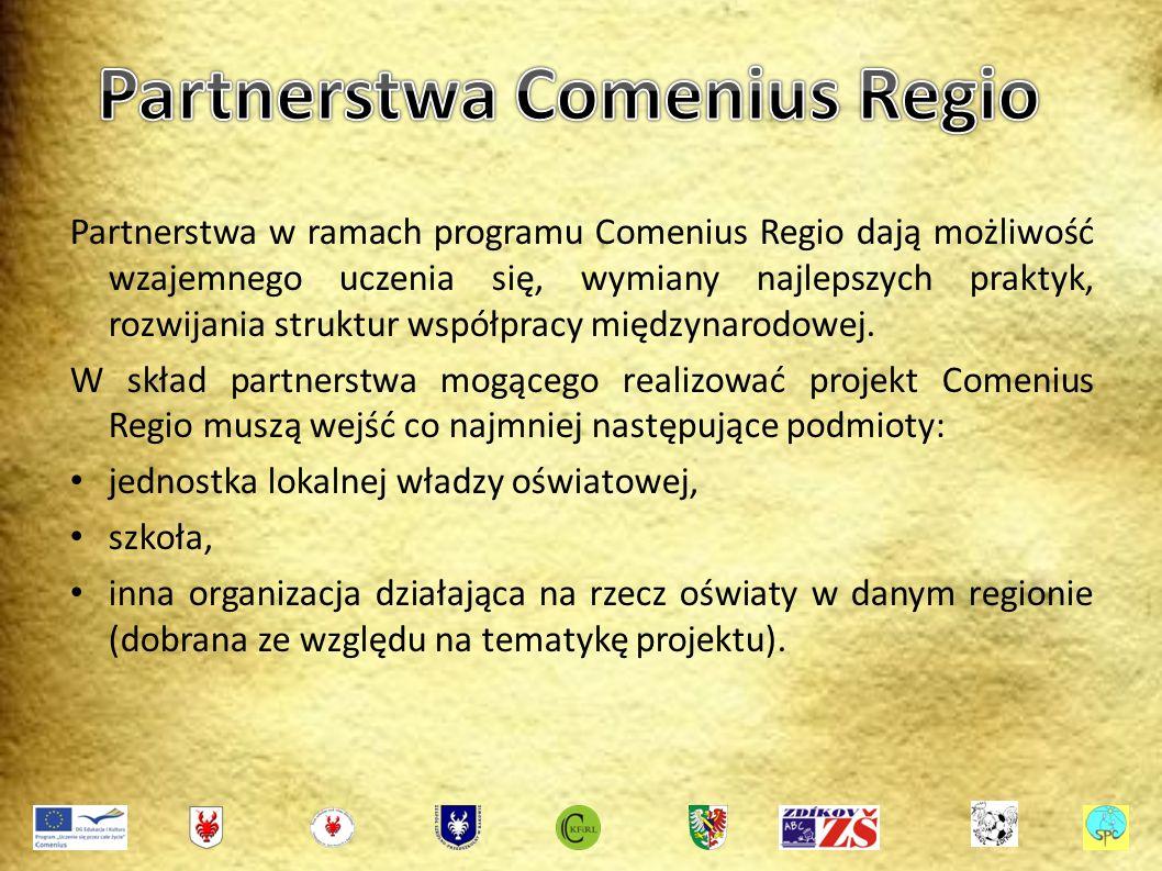 Partnerstwa w ramach programu Comenius Regio dają możliwość wzajemnego uczenia się, wymiany najlepszych praktyk, rozwijania struktur współpracy międzynarodowej.
