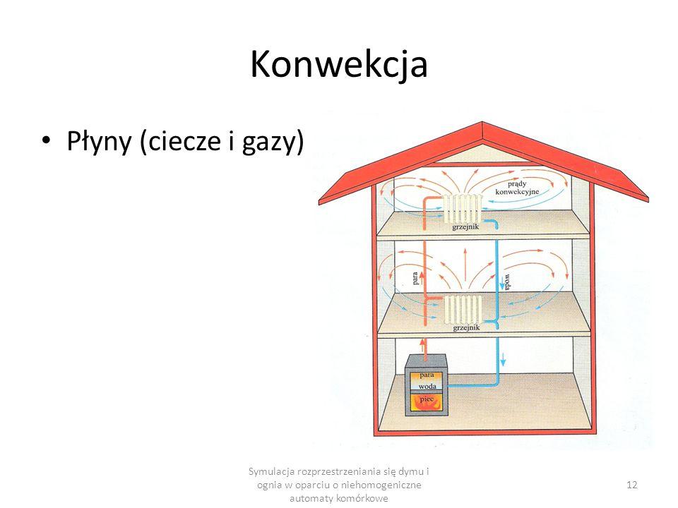 Konwekcja Symulacja rozprzestrzeniania się dymu i ognia w oparciu o niehomogeniczne automaty komórkowe 12 Płyny (ciecze i gazy)