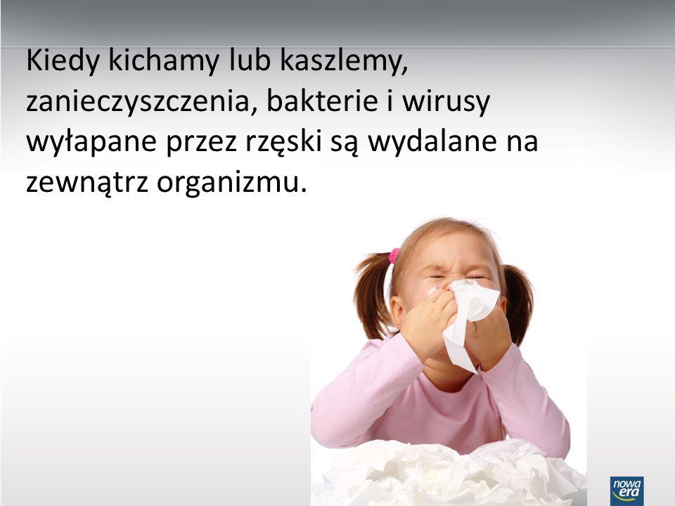 Kiedy kichamy lub kaszlemy, zanieczyszczenia, bakterie i wirusy wyłapane przez rzęski są wydalane na zewnątrz organizmu.