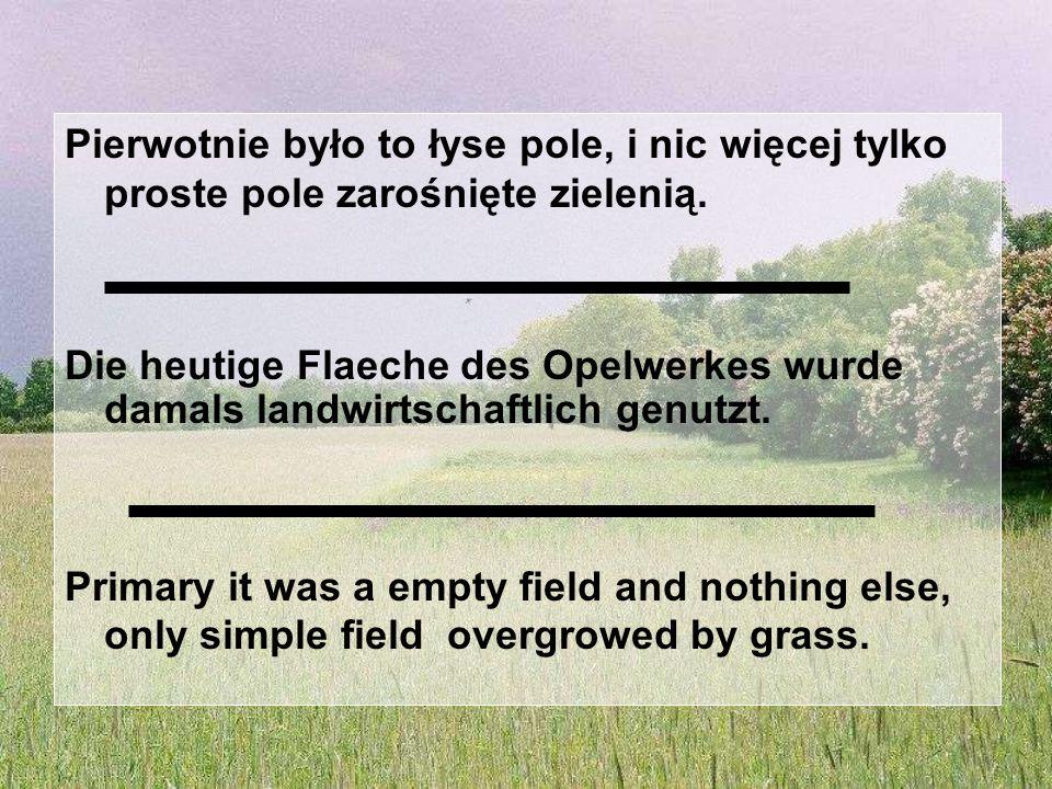 Pierwotnie było to łyse pole, i nic więcej tylko proste pole zarośnięte zielenią.