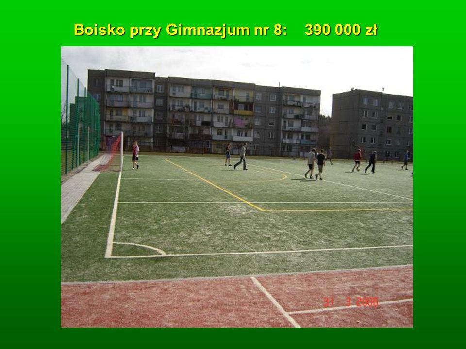 Boisko przy Gimnazjum nr 8: 390 000 zł